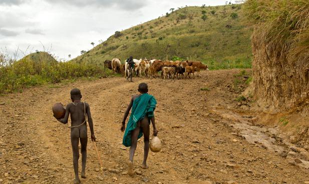 Pastoralists 2